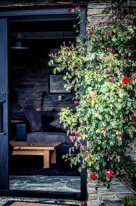 Creagh Cottage, Prázdninové domy  Arrowtown - big - 17