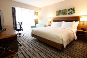 obrázek - Hilton Garden Inn Ankara Gimat