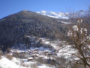 Chalet Bois d'Antan - Accommodation - Sainte-Foy Tarentaise