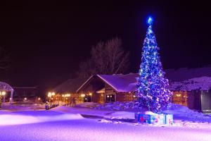 Hotel Complex Atmosfera na Volge - Privol'skiy