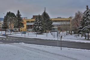 Hotel Šariš, Отели  Бардеёв - big - 11
