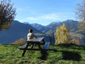 Location gîte, chambres d'hotes Ancien Chalet D'alpage dans le département Savoie 73