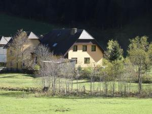 Apartment Stallbauer 1 - Lachtal