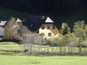 Apartment Stallbauer 2 - Pusterwald