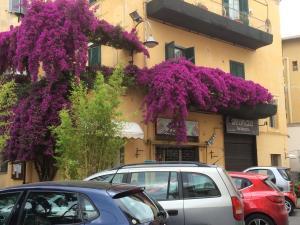 obrázek - Casa Vacanze Anzio Centro