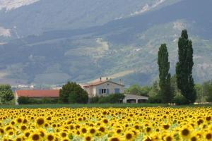 Location gîte, chambres d'hotes Chalet Perdu dans le département Haute Savoie 74