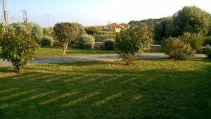 Villa Mirothea Alonissos, Villák  Alóniszosz óvárosa - big - 46
