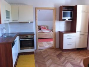 Ferienwohnungen Grün, Appartamenti  Preitenegg - big - 17