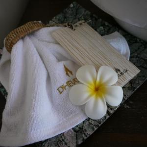 Dhevatara Beach Hotel, Szállodák  Grand'Anse Praslin - big - 41