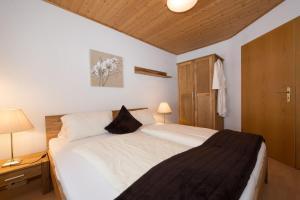 Appartement Auckenthaler, Apartmanok  Ehrwald - big - 4