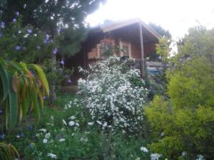 wooden Edge Of The Village, Lodges  Ma'ale Gamla - big - 44