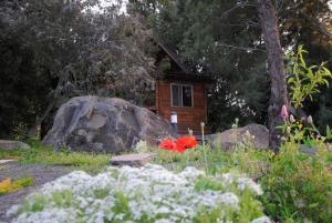 wooden Edge Of The Village, Lodges  Ma'ale Gamla - big - 19