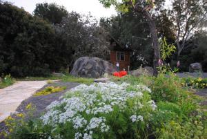 wooden Edge Of The Village, Lodges  Ma'ale Gamla - big - 10