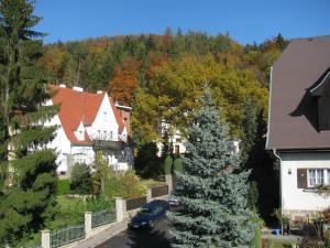 Diamant, Vendégházak  Karlovy Vary - big - 75