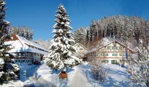Allgäu Hotel Hofgut Kürnach - Leutkirch-Ausnang