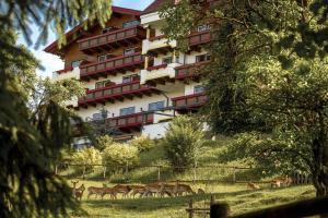Natur- und Wohlfühlhotel Kastenholz - Antweiler
