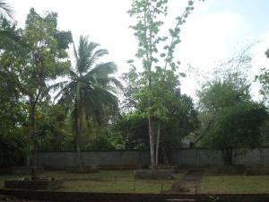 Orchid Palace, Szállodák  Anuradhapura - big - 69