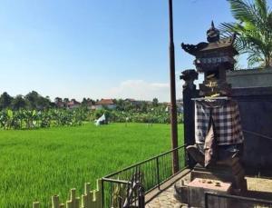 Bali Green Hostel, Ostelli  Seminyak - big - 9