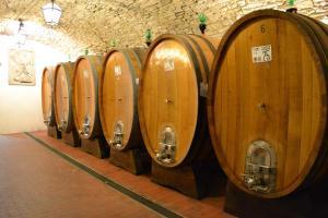Castello Vicchiomaggio (39 of 40)