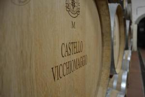 Castello Vicchiomaggio (23 of 40)