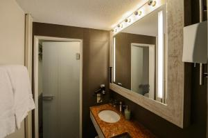 Alexander Guesthouse Zurich Old Town, Penziony  Curych - big - 44