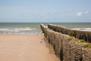 Domburg4you, Hotely  Domburg - big - 18