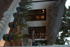 Casa Costa Azul, Отели  Сан-Хосе-дель-Кабо - big - 70