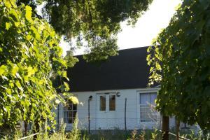 De Kombuys, Bed & Breakfasts  Oudtshoorn - big - 31