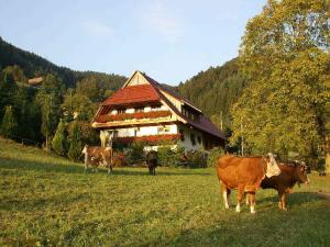 Unterer Gurethshof - Biberach bei Offenburg