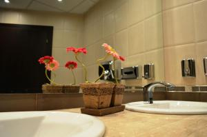 Riverside Hotel, Hotel  Yambol - big - 7