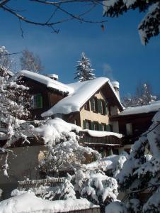 FERIENWOHNUNGEN Chalet Hohturnen - Hotel - Grindelwald