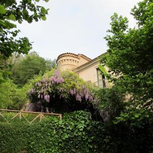 Palazzo Gallotti - Tortorella