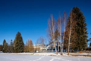 Orea Resort Devět Skal Vysočina, Hotely  Sněžné - big - 35