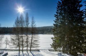 Orea Resort Devět Skal Vysočina, Hotely  Sněžné - big - 28