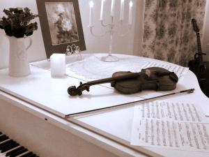 Guest house Vishneviy Sad - Plyos
