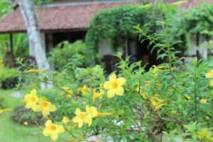 Margo Utomo Eco Resort, Resort  Kalibaru - big - 69