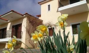 Dimitra Achaia Greece