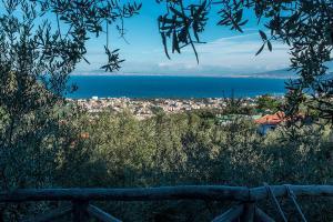 Casa Mazzola, Bed and breakfasts  Sant'Agnello - big - 18