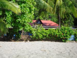 Ivan's House Beach Front Property, Montezuma