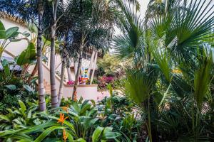 Crane's Beach House Boutique Hotel & Luxury Villas, Hotels  Delray Beach - big - 29