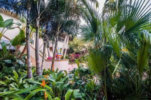 Crane's Beach House Boutique Hotel & Luxury Villas, Hotels  Delray Beach - big - 36
