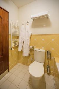 Hotel Torysa, Hotels  Sabinov - big - 46