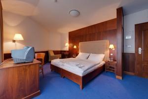 Hotel Torysa, Hotels  Sabinov - big - 74