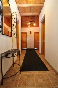 Guest House Alpha Ski Camp, Inns  Jahorina - big - 3