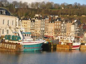 Les Coquillettes, Bed & Breakfasts  Honfleur - big - 73