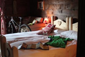 Alpin Park, Bed & Breakfasts  Sappada - big - 9