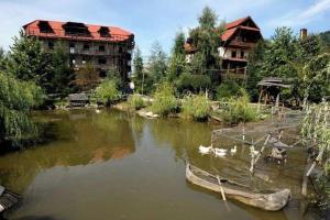 Accommodation in Borșa