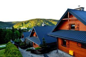 Alpejskie Domy Ski House