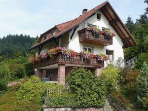Apartment Herbert Panter - Bad Peterstal