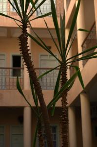 Riad Taroudant, Riads  Taroudant - big - 36